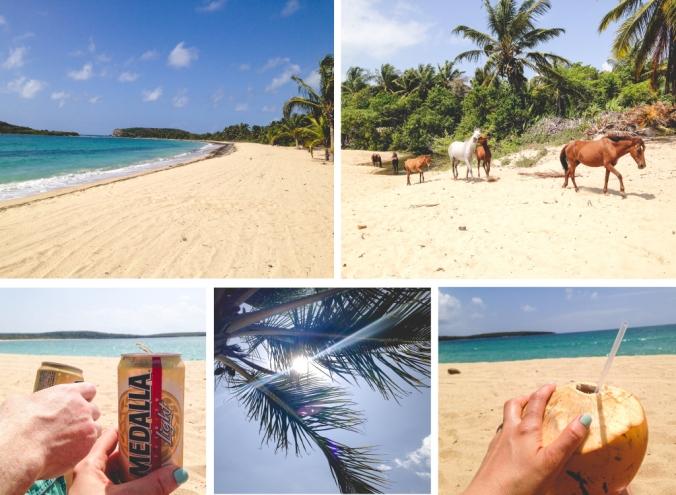 A Feteful Life: Vieques Sun Bay